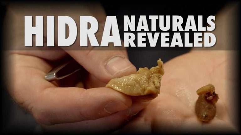 Video 12 Hidra Naturals Revealed Poster